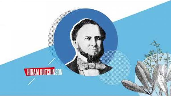 La Saga Hutchinson